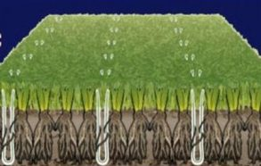 Wimbledon testa l'erba sintetica