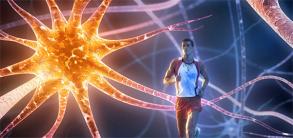 Allenare il cervello: perché l'attività sportiva rende più intelligenti